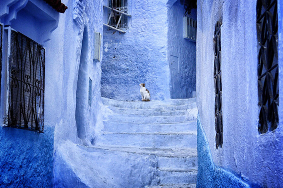 blue-streets-of-chefchaouen-morocco-4-660x439