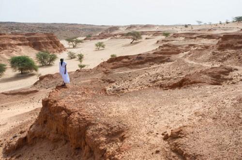Mauritania-Railway_09-1-568