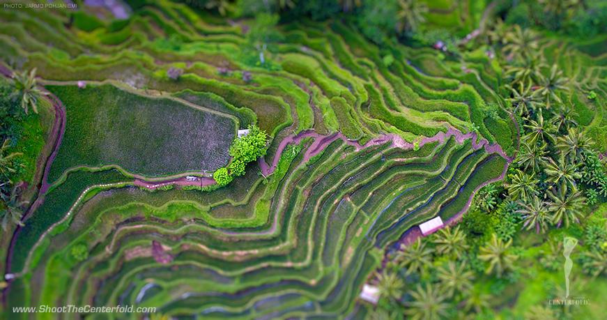 Riceterrace-Jarmo-871