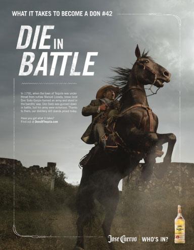 patric-horse-384