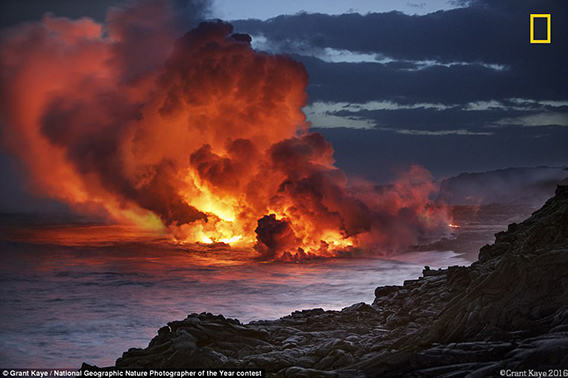 Kamokuna_Ocean_Entry_November_2016_by_Damilice_Mansur_Lava_flows-568